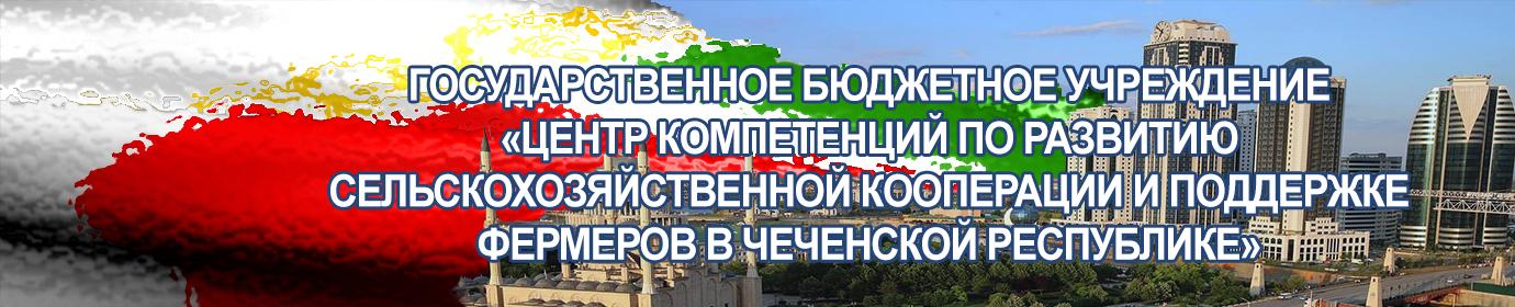 ГБУ ЦКСиФ ЧР